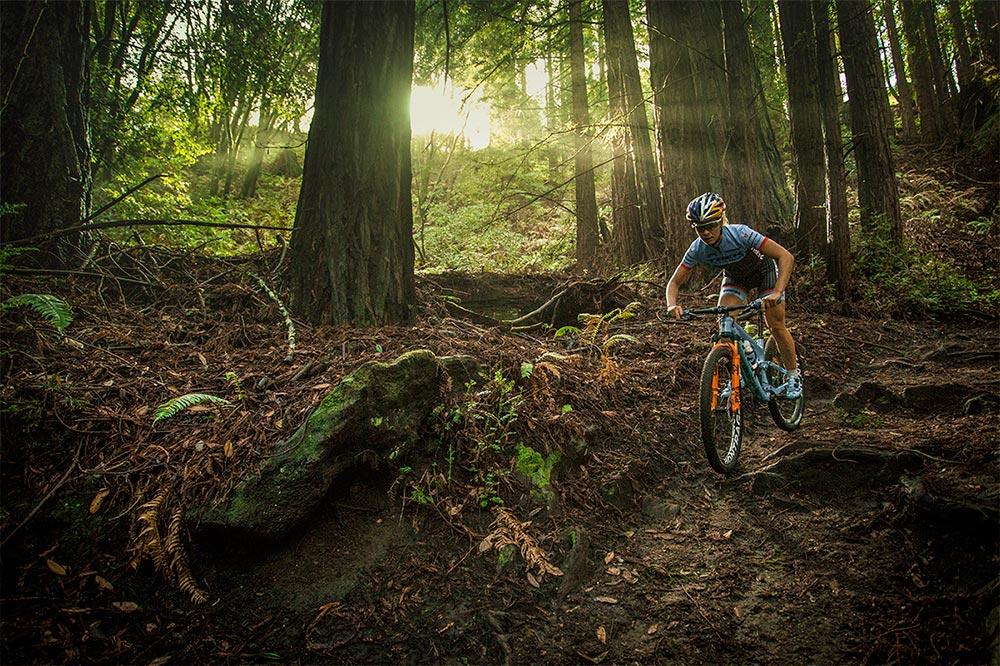 Emily Betty rijdt op haar mountainbike door een bos met grote brede bomen. Op de achtergrond schijnt de zon door de bomen