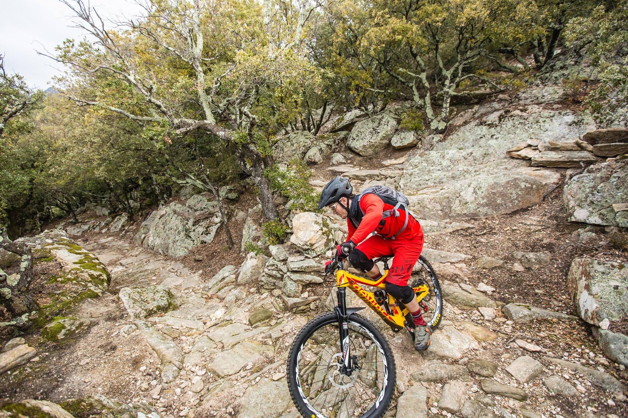 Een man mountainbiked over een romeins pad naar beneden. Overal liggen rotsen in dit bos.