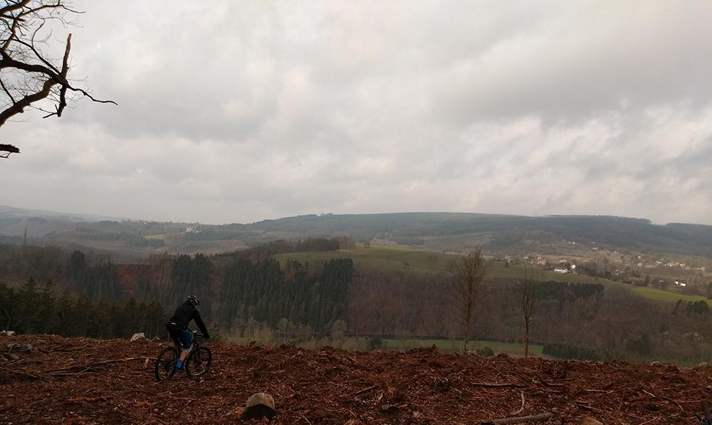 Uitzicht over gekapt bos bij Coo