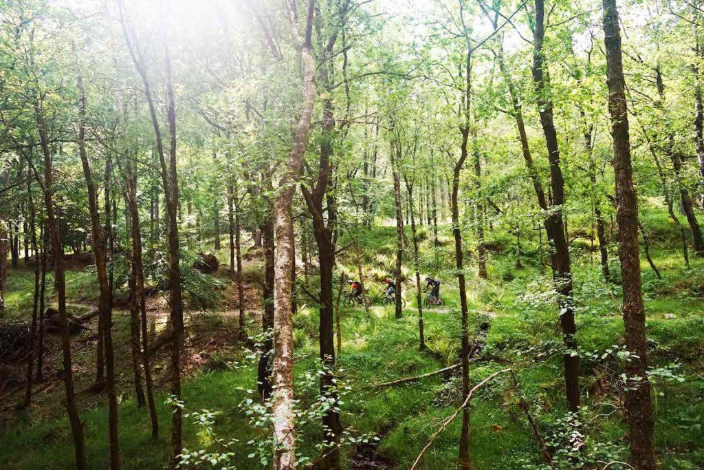 Mountainbiken in Engeland door een van de bossen in Lage District