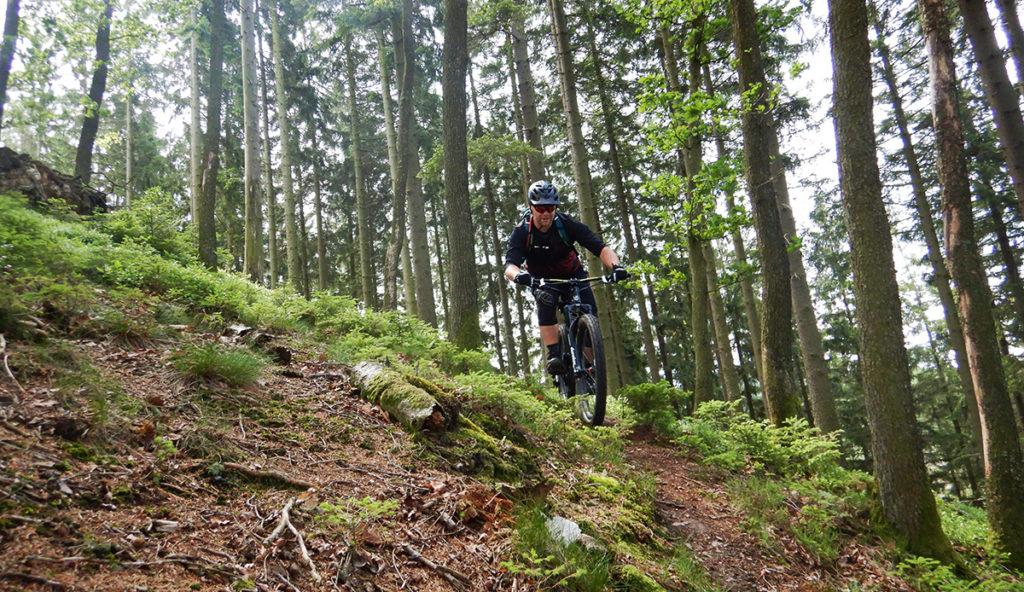 Reinhardstein trail