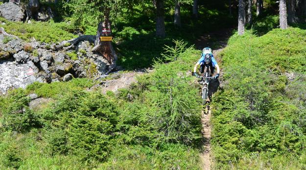 Neukirchen steep trail at the 737 trail wildkogel