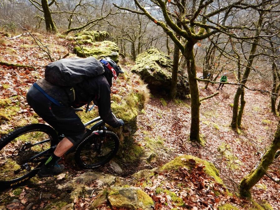 Zeer steile trail met rotsen aan beide kanten. De rotsen zijn met fel groen mos bedekt