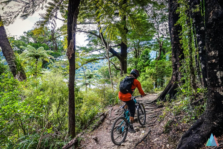 Ben Wurmser rijdt over een trail met veel wortels door een groen bos in Nieuw-Zeeland