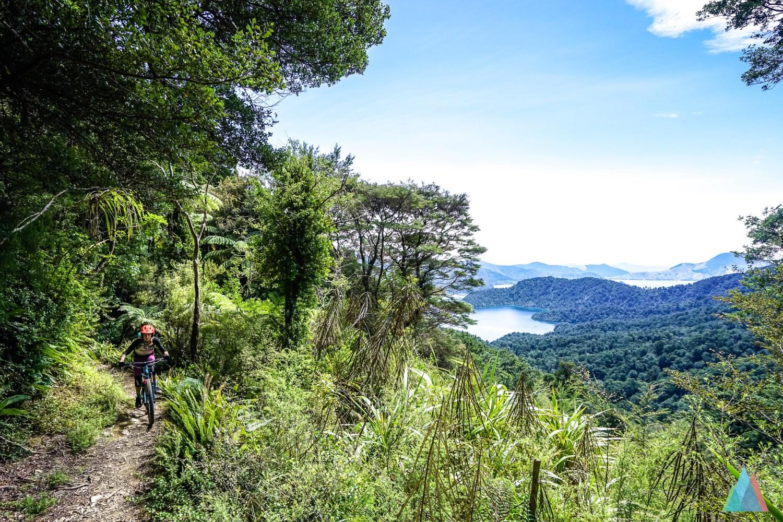 Een mountainbiker rijdt over een trail in Nieuw-Zeeland met uitzicht op een mooi bos en een meer in de verte