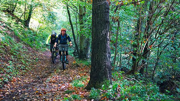 Nico en Paul rijden over een bospad omhoog