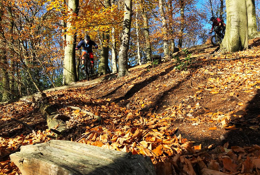 witten_bikepark_trail