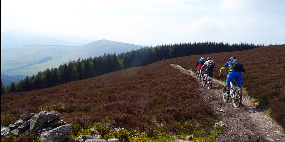 schotland_heide_trail