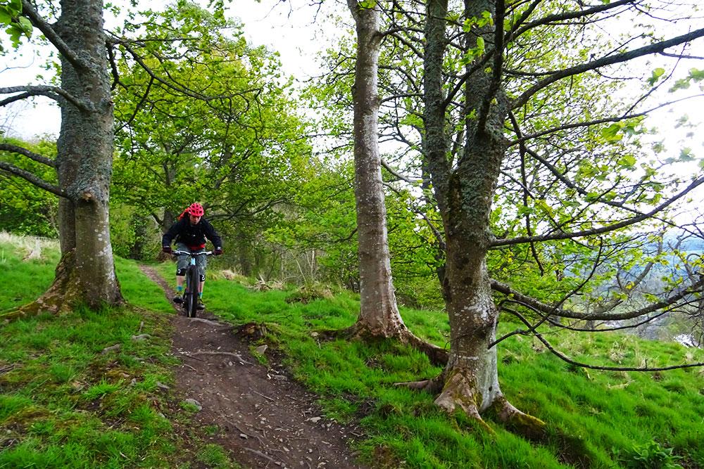 schotland_trail_groengras
