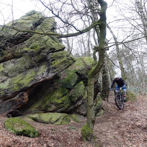 Tecklenburg trail