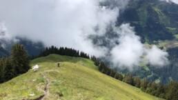 Virtigo trail